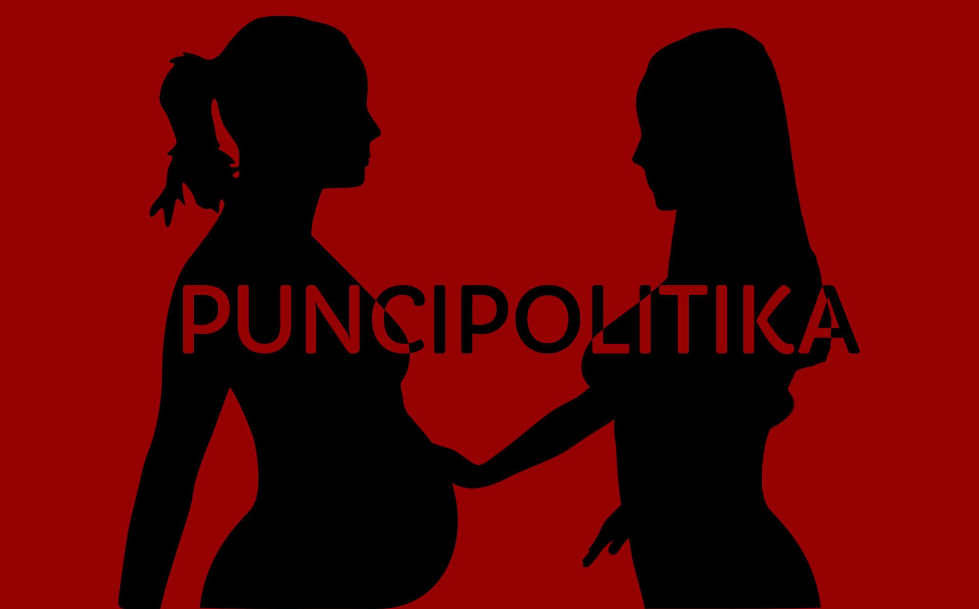 puncipolitika2.jpg