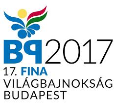 vb 2017.png