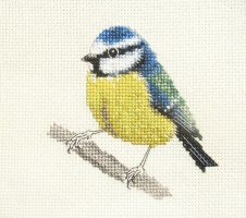 Fido Stitch Studio - BLUE TIT.jpg