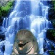 delfiney