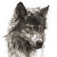 hunwolf